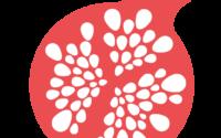 logo_wedogood_abrege